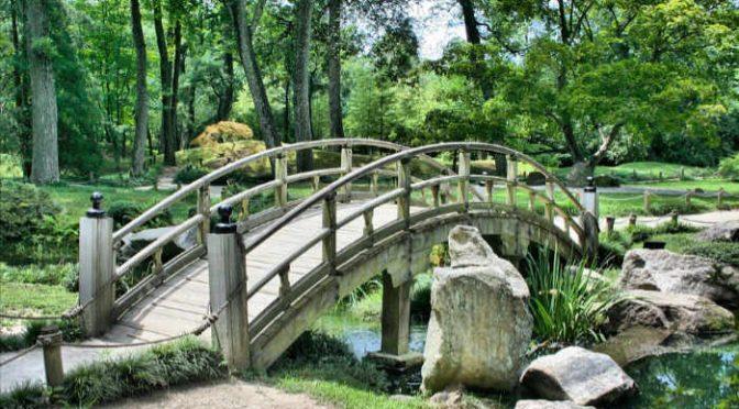Budowa parku na Zakrzówku przekracza budżet